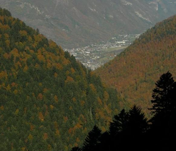 Paysage_automne_12