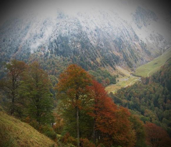 Paysage_automne_13
