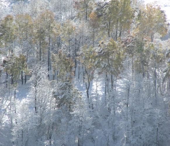 Paysage_hiver_BG_106