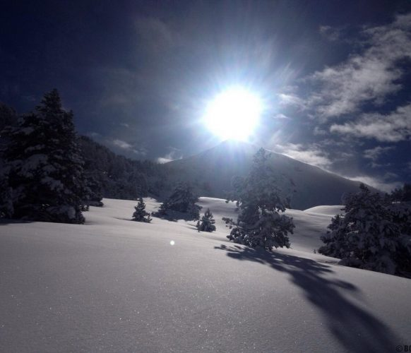 sortie-psy-hiver_01