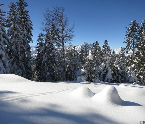 sortie-psy-hiver_04