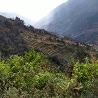Trek - Nepal 13j-12n_rek Mardi Himal_10